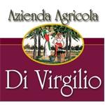 azienda vitivinicola biologica - Torino di Sangro(CH)