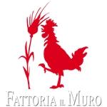 Fattoria Il Muro Della Famiglia Pancaro S.S. Soc. Agr. - Arezzo(AR)
