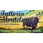 Fattoria Montelupo - Città di Castello(PG)