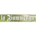 Tenuta La Fiammenga s.s.a. - Penango(AT)