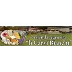 Li Carvi Bianchi - Mesenzana(VA)