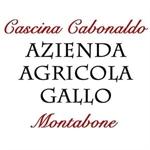 Gallo S. S. - Montabone(AT)