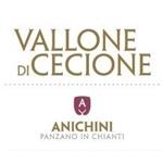 Vallone Di Cecione - Panzano in Chianti(FI)