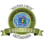 'I Monelli' - Grottaminarda(AV)