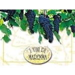Cantina I Vini Di Maremma - Grosseto(GR)
