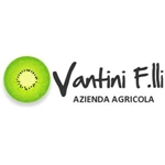 Fratelli Vantini - Verona(VR)