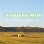 Cifarelli Pietro - Altamura(BA)