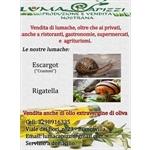 lumaCapizzi - Biancavilla(CT)