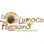 Lumaca Polesana Di Pellegrini Roberta - San Martino di Venezze(RO)