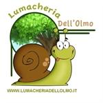 Lumacheria Dell'olmo - Mariana Mantovana(MN)