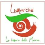 LUMARCHE - Allevamento di lumache nelle Marche - Pergola(PU)
