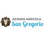 San Gregorio Di Massimo Cipolat - Aviano(PN)