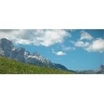 Impresa agricola Michielli - Vodo di Cadore(BL)