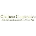 Oleificio Cooperativo Leverano - Leverano(LE)