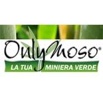 Consorzio Bambù Italia - Cattolica(RN)
