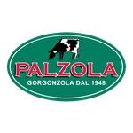 Palzola s.r.l  - Cavallirio(NO)