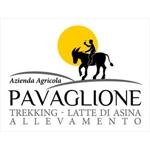 Az.Agr.Pavaglione - Castino(CN)