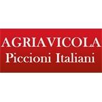 Agriavicola Piccioni Italiani - Spoleto(PG)