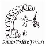 Antico Podere Ferrari - reggio Emilia (RE)