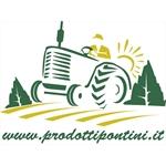 Prodotti Pontini - Latina(LT)