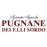 Azienda Agricola PUGNANE - Castiglione Falletto(CN)
