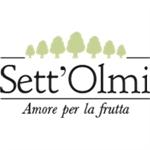Azienda Ortofrutticola Sett'olmi - Perugia(PG)