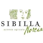 Sibilla Di Norcia - Norcia(PG)