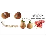 Sudrise - Corleto Perticara(PZ)