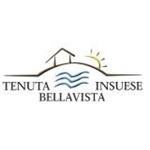 Tenuta Bellavista Insuese - Collesalvetti(LI)