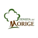 Az. Agr. Tenuta del Morige - Galatone(LE)