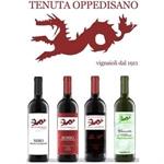 Tenuta Oppedisano Feudo Calderone - Caulonia(RC)