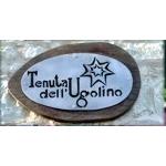 TENUTA DELL'UGOLINO - Castelplanio(AN)