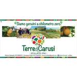 Soc. Semplice agricola Terre di Carusi  - Scillato(PA)