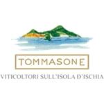 Tommasone Vini - Lacco Ameno(NA)