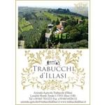 TRABUCCHI D'ILLASI - Illasi(VR)