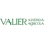 VALIER - LINEA NOCE VERDE