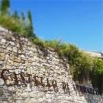 Castello di Verrazzano - Greve In Chianti(FI)