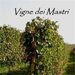 Vigne Dei Mastri - Costigliole d'Asti(AT)