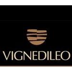 VIGNEDILEO - Staffolo(AN)