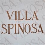 Villa Spinosa Azienda Agricola - Negrar(VR)