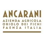 Ancarani - Faenza(RA)