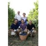 Vitivinicola Manera - Castelfranco Veneto(TV)