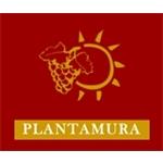 Plantamura - Gioia del Colle(BA)