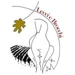 Lecci E Brocchi - Castelnuovo Berardenga(SI)