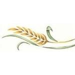 Voglia di pane - Sant'Arpino(CE)