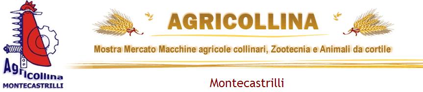 Agricollina 2013:Mostra mercato macchine agricole collinari, zootecnia e animali da cortile